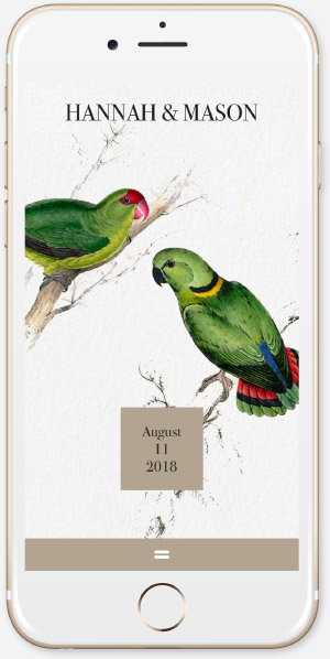Vintage Lovebirds App