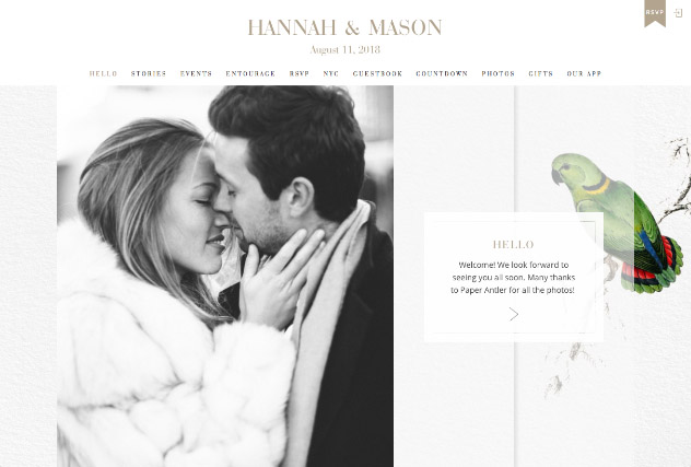 Vintage Lovebirds multi-pages website layout