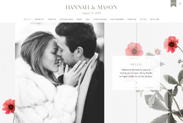 Vintage Poppies multi-pages website layout